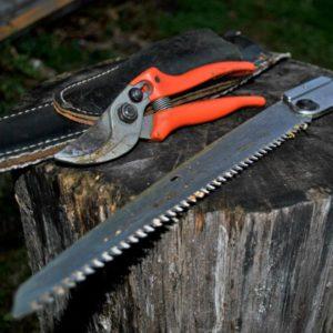 Werkzeug für Obstschnitt, Obstschnittkurs